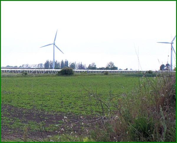 Vindmøller,roer og solceller i Guldborgsund Kommune